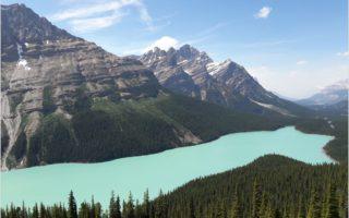 peyto lake narodni parky kanady