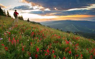Alpine Hike Sun Peaks Resort