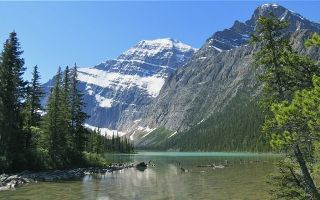 Mount Edith Cavell Tour
