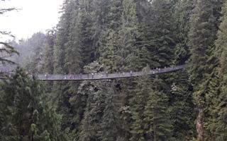 Okružní jízda Vancouverem & visutý most Capilano
