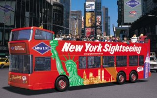 Gray Line City Sightseeing